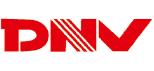 Logo Dong Nam Viet Packaging